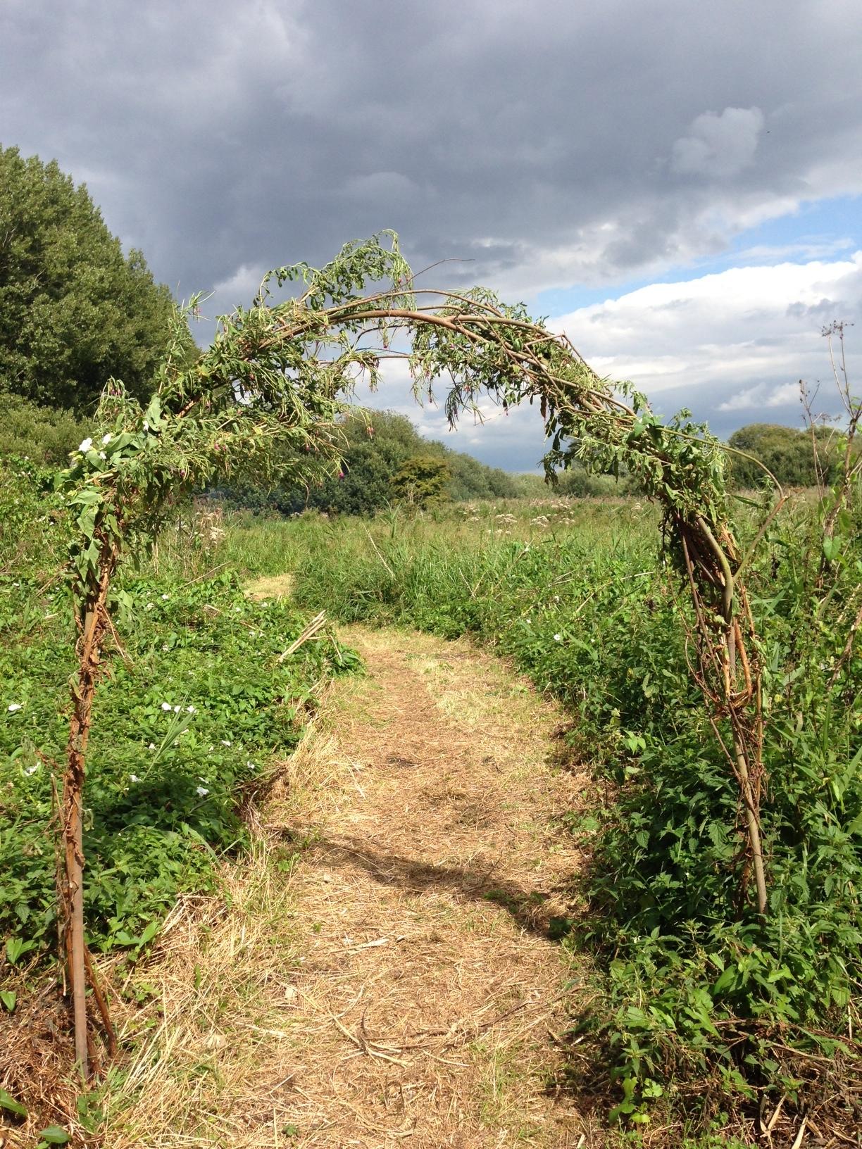 meadow entrance