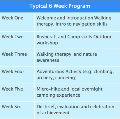 Example 6 Week Footprints Program